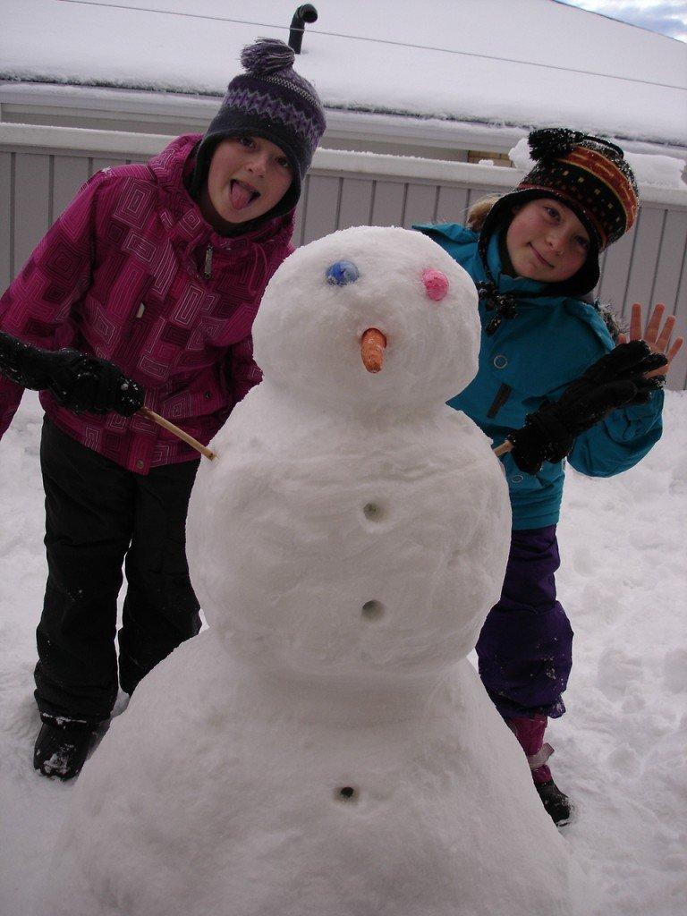 Enseveli sous la neige dans Hiver DSC07501-768x1024