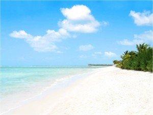 Cap au Sud dans Tranches de vie plage-300x225