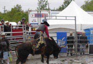 rodeo-2-300x206 dans Tranches de vie